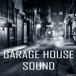 VARIOUS - Garage House Sound