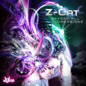 Z-CAT - Beyond All Dimensions