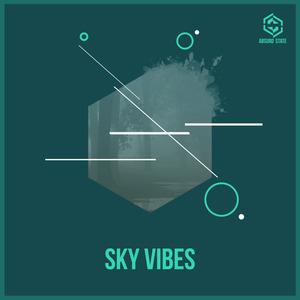 VARIOUS - Sky Vibes
