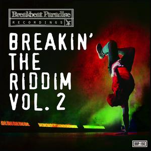 VARIOUS - Breakin The Riddim Vol 2