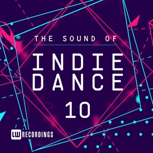 VARIOUS - The Sound Of Indie Dance Vol 10