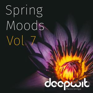 VARIOUS - Spring Moods Vol 7