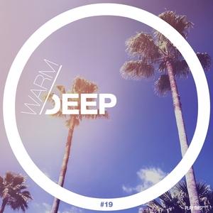 VARIOUS - Warm & Deep #19