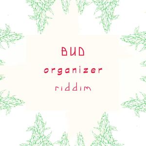 SISTA NAMELY/ROOTSMAN I/PLATA/DON TIPPA/MISTAH KAYAMAN/GIW - Bud Organizer Riddim