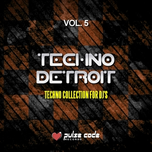 VARIOUS - Techno Detroit Vol 5 (Techno Collection For DJ's)