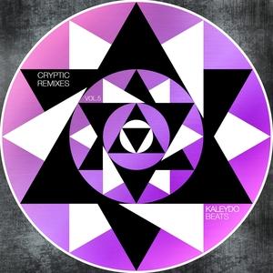 VARIOUS - Cryptic Remixes Vol 5