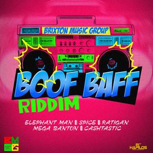 VARIOUS - Boof Baff Riddim (Explicit)