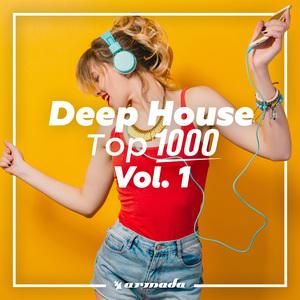 VARIOUS - Deep House Top 1000 Vol 1