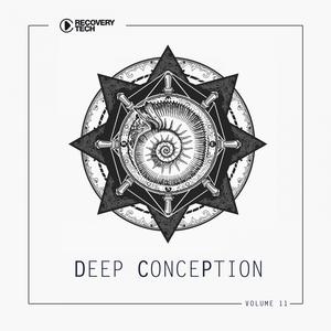 VARIOUS - Deep Conception Vol 11