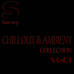 VARIOUS - CHILLOUT & AMBIENT COLLECTION Vol 1