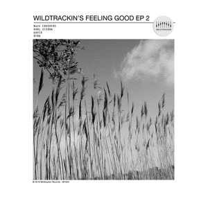 WAVE CRUSHERS/KARL SIERRA/GAVIO & DFRA - Wildtrackin's Feeling Good 2