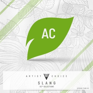 DJ SLANG/VARIOUS - Artist Choice 060: Slang (6th Selection) (unmixed tracks)