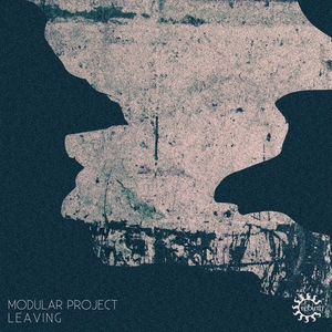 MODULAR PROJECT - Leaving