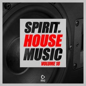 VARIOUS - Spirit Of House Music Vol 18