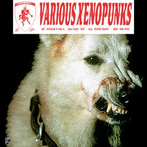 LOUH/NICOLA KAZIMIR/WALID/AUDINO - Various Xenopunks EP