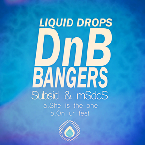 SUBSID & MSDOS - Dnb Bangers Vol 5