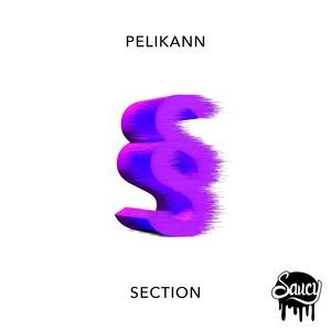 PELIKANN - Section