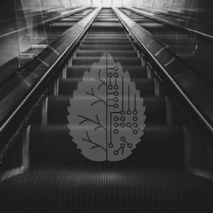 DJ MADD - Take It Down Low