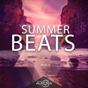 VARIOUS - Summer Beats 01