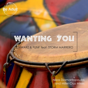SCHWARZ & FUNK feat STORM MARRERO - Wanting You