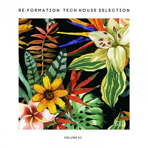 VARIOUS - Re:Formation Vol 43: Tech House Selection