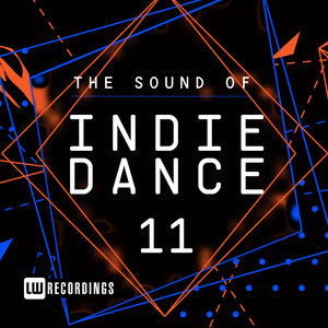 VARIOUS - The Sound Of Indie Dance Vol 11
