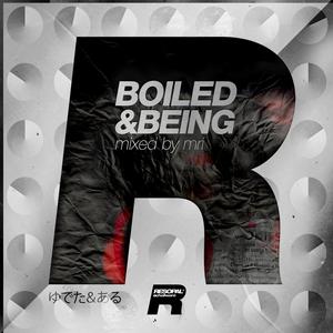 VARIOUS - Boiled & Beeing