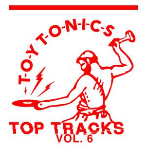 VARIOUS - Toy Tonics Top Tracks Vol 6