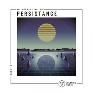 VARIOUS - Voltaire Music Present Persistence #12