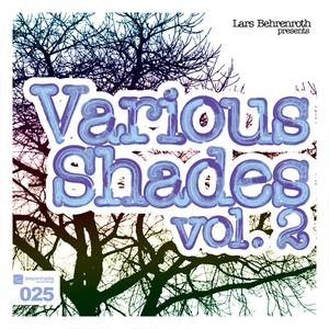 VARIOUS - Lars Behrenroth Presents Various Shades Vol 2