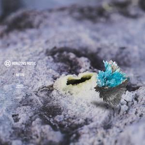 NITRI - Circles LP (Sampler)