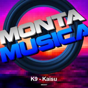 K9 - Kaisu