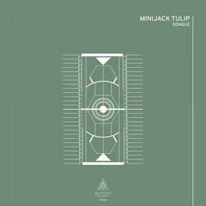 MINIJACK TULIP - Dongle
