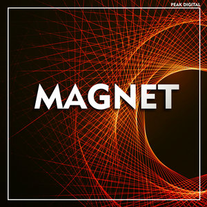 VARIOUS - Magnet