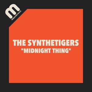 THE SYNTHETIGERS - Midnight Thing