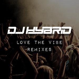 DJ HYBRID - Love The Vibe Remixes