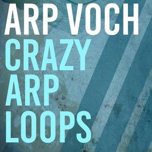 ARP VOCH - Crazy Arp Loops 2