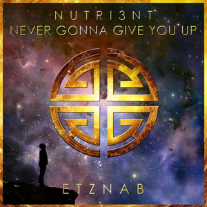 Never Gonna Give You Up By Nutri3nt On Mp3 Wav Flac Aiff Alac At Juno Download