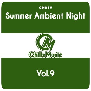 VARIOUS - Summer Ambient Night Vol 9