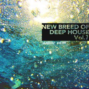 AIKO MORITA/VARIOUS - New Breed Of Deep House Vol 7 (unmixed tracks)