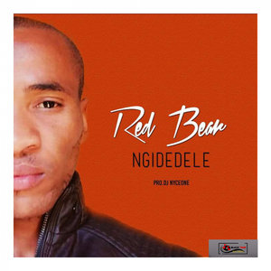 RED BEAR - Ngidedele
