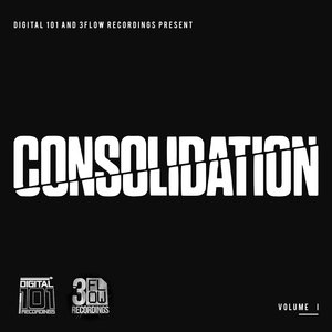 VARIOUS - Digital 101 And 3Flow Recordings Present Consolidation Vol I