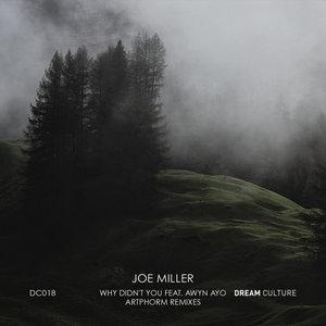 JOE MILLER - Why Didn't You