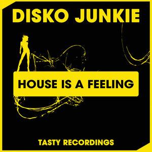 DISKO JUNKIE - House Is A Feeling