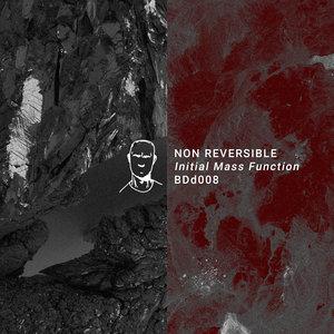 NON REVERSIBLE/KYLE GEIGER/VERSCHWENDER/PHARA/PHILIPPE PETIT - Initial Mass Function EP
