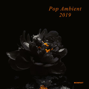 VARIOUS - Pop Ambient 2019 (unmixed tracks)