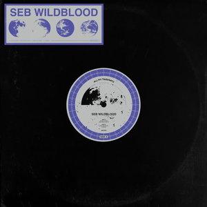 SEB WILDBLOOD - Bad Space Habits