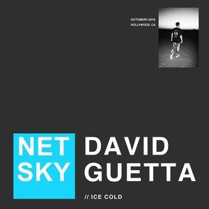 NETSKY/DAVID GUETTA - Ice Cold