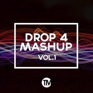 TM RECORDS - Drop 4 Mashup Vol 1