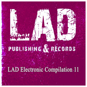 VARIOUS - Lad Electronic Compilation 11